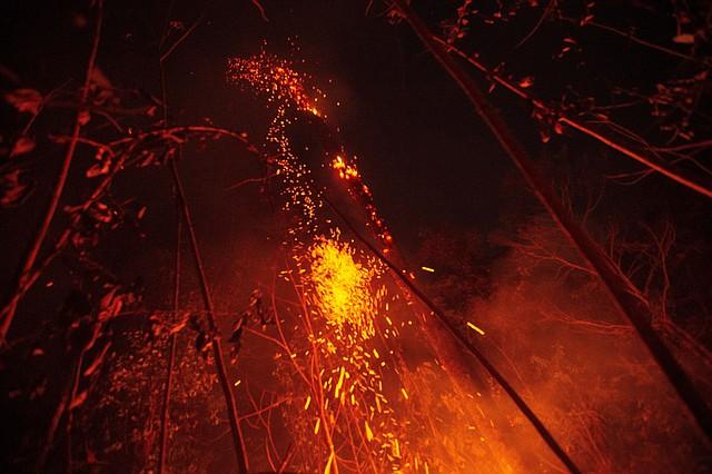 AMAZONÍA. A unos 150 kilómetros de Porto Velho, la capital regional del amazónico estado de Rondonia, una considerable parte de tierra arde de manera ininterrumpida hace más de 24 horas y ya ha consumido más de cinco kilómetros del terreno. | Foto Efe/Joédson Alves