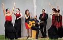 Flamenco bajo las estrellas.