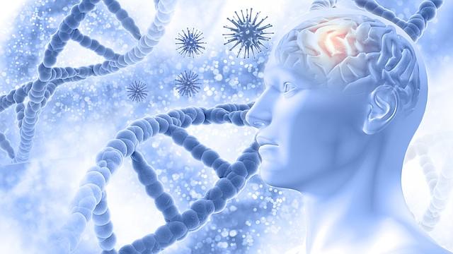 CUERPO. El gluthatione se encuentra en diversos grados en todos los tejidos, fluidos corporales y sistemas de órganos / Abstract photo created by kjpargeter - www.freepik.com