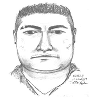 Imagen realizada por las autoridades con la descripción del sospechoso de asalto sexual y robo. | Foto: Policía de Fairfax.