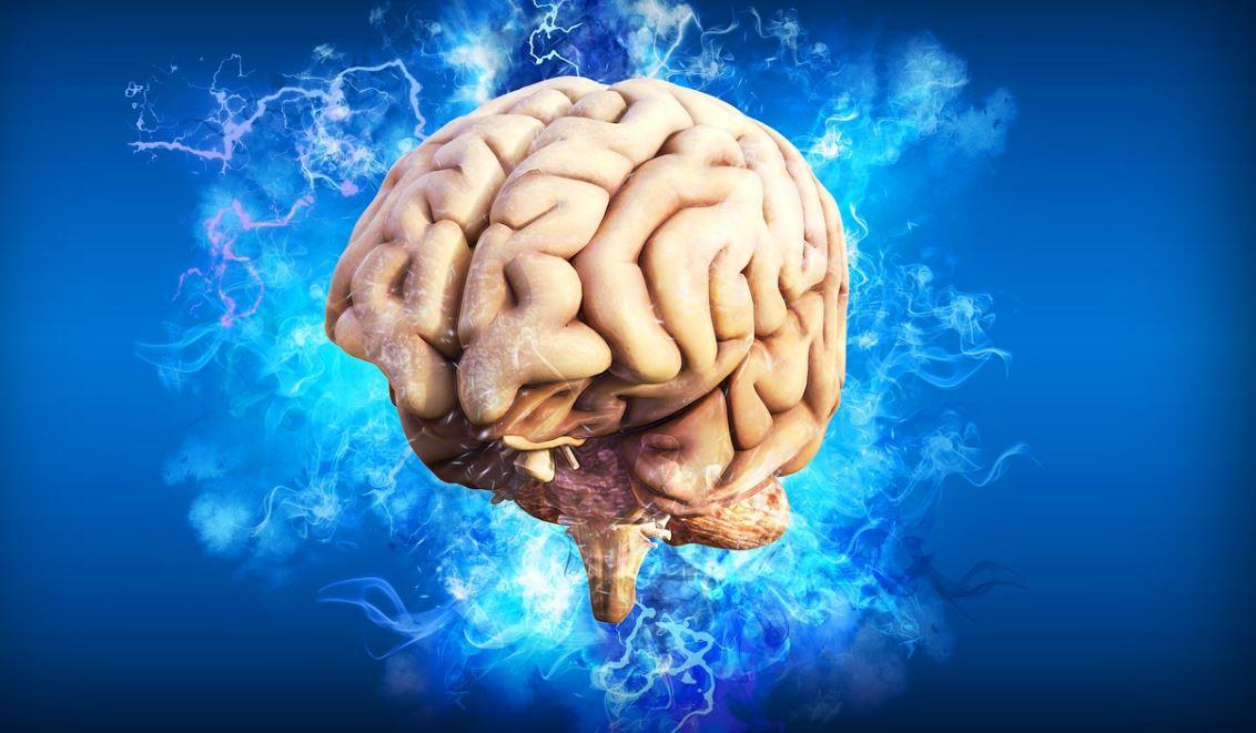 SALUD. La neuroplasticidad, según un experimento, permite adaptar las estrategias motoras.   Foto: Pixabay.