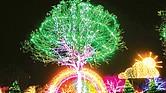 ESPERANZA. Aunque los eventos navideños Trail of Lights y Peppermint Parkway ofrecerán una experiencia distinta a la comunidad, la noticia alegró a muchas familias del Centro de Texas.