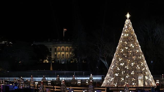 TRADICIÓN. El Árbol de Navidad Nacional, en la Elipse en frente de la Casa Blanca. |. FOTO: Cortesía NPS Photo / Liz Macro. |