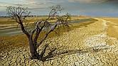 La temperatura media del planeta ha aumentado en más de 2 grados Fahrenheit desde finales del siglo XIX.