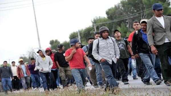 Detenciones de migrantes en frontera con México caen por séptimo mes  Boston's Online Hispanic Community   El Planeta